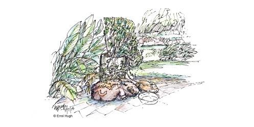 harlan-garden-sketch-3